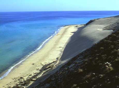 playa-sotavento.jpg